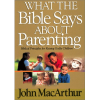 WHAT THE BIBLE SAYS ABOUT PARENTING - SUCCESSFUL CHRISTIAN PARENTING
