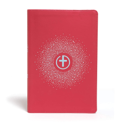 Anglais Bible CSB Big Picture - Pink - Leather Touch