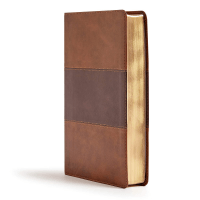 Anglais Bible KJV Reference Giant Print Duo Brown leathertouch